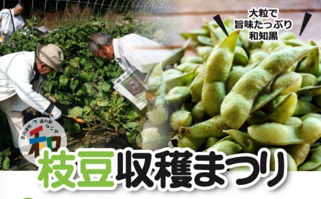 枝豆収穫まつり